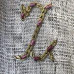 Nuevas letras bordadas E, Z y V con mariposa